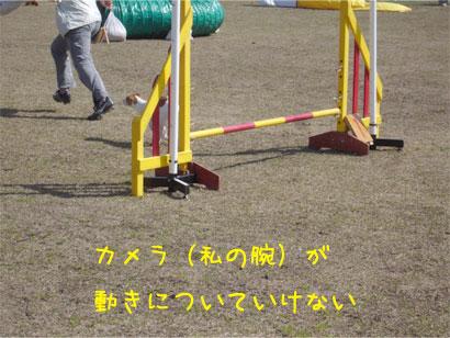 f0132772_923111.jpg