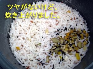 我が家で試食~洒落たタイ米の巻き_f0144385_1784961.jpg