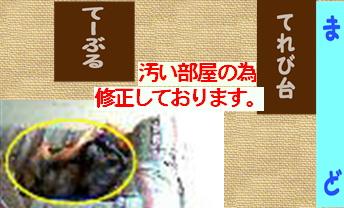 f0195891_16574327.jpg