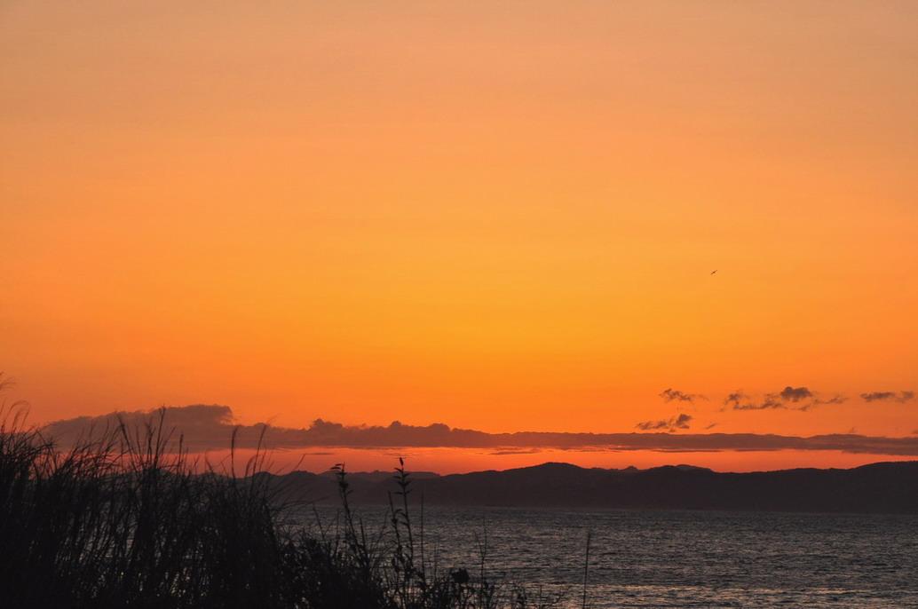 朝 の 風 景 No.3_d0039021_18263010.jpg