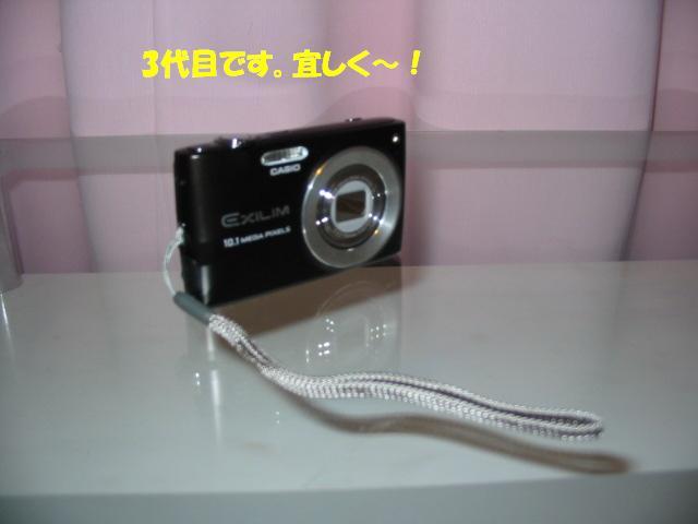 f0182121_6453913.jpg