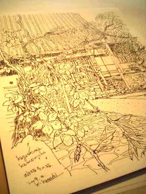 幽栖寺の桜_f0091634_13455651.jpg