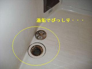 f0031037_20392419.jpg