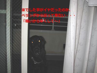 b0148945_22494714.jpg