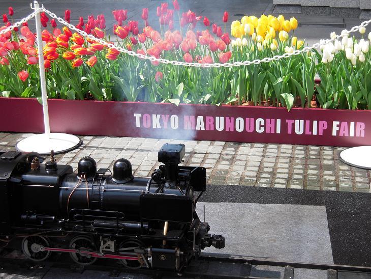 Tulip Fair 2_d0135762_22551436.jpg