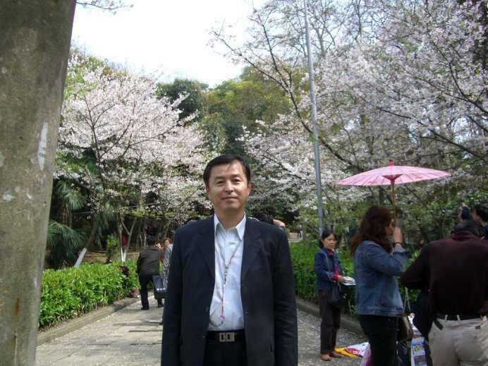 ■武漢の桜_e0094583_7294518.jpg