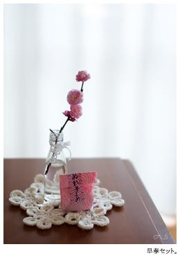 Sakuravertの季節。