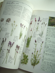 私の本だなから 3月 ~「ハーブ図鑑110 栽培と利用法の実践ガイド」_c0138704_22143213.jpg