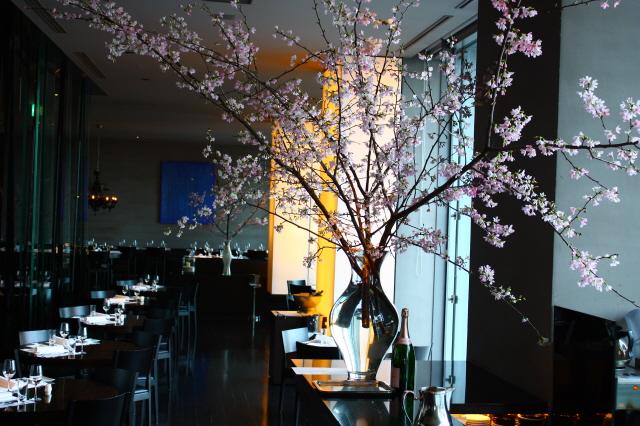 桜祭り(仮題)_c0188809_21591815.jpg