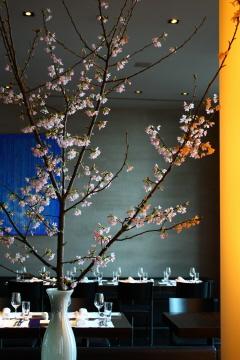 桜祭り(仮題)_c0188809_2159862.jpg