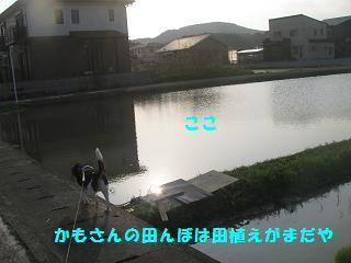d0104209_20425736.jpg