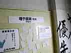 """the pillows、森純太 @ ロックの学園  \"""" ppr \""""編 09.03.20_d0131511_2183928.jpg"""
