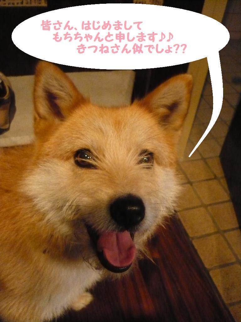 めでたぁぁぁ===い!!&お泊り♪_b0130018_1535536.jpg