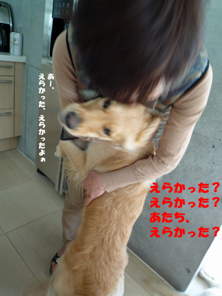 e0038241_0515776.jpg