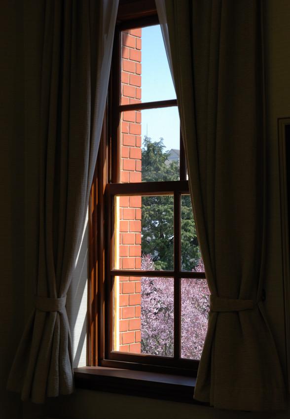桜、建物の中より_c0171945_1982130.jpg