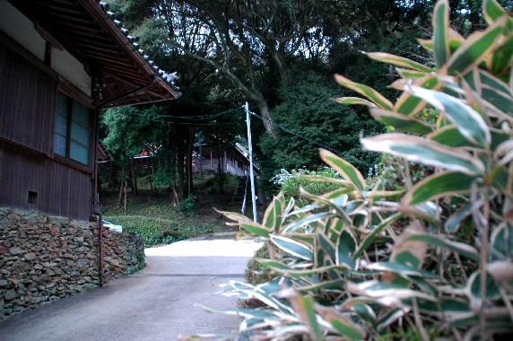 和歌山の神社_b0093754_0384726.jpg