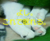 c0052756_1534010.jpg