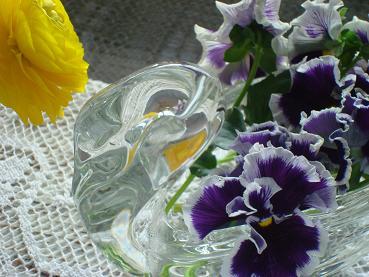 春の花_d0006467_212921.jpg