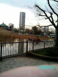 a0068548_910957.jpg