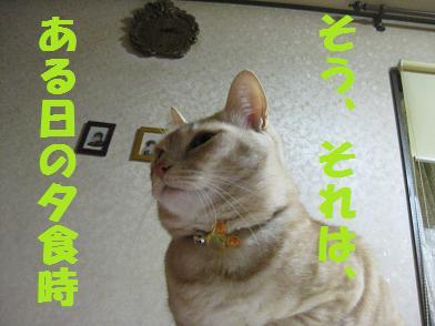 b0151748_1301626.jpg