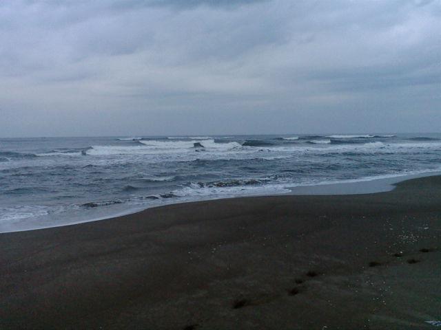 海3月25日_b0112351_6501055.jpg