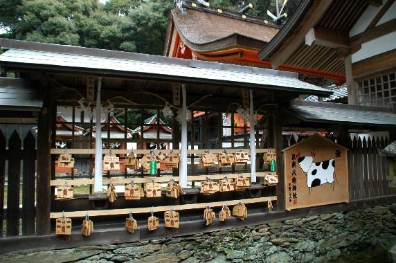 和歌山の神社_b0093754_0103842.jpg