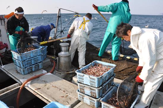 小さな漁村の奇跡の復活劇~徳島県・伊座利地区_e0171573_2334417.jpg