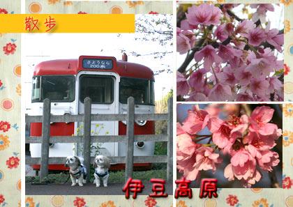 b0024183_22375266.jpg