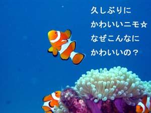 f0144385_19105277.jpg
