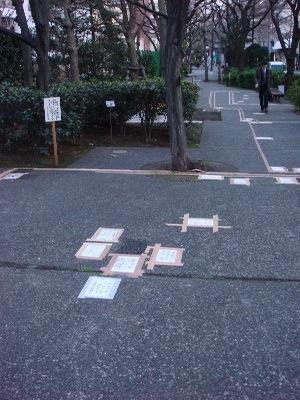 桜の通り道_b0151300_18124572.jpg