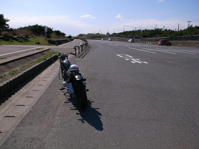 天気がよかったので、_d0101000_17443225.jpg