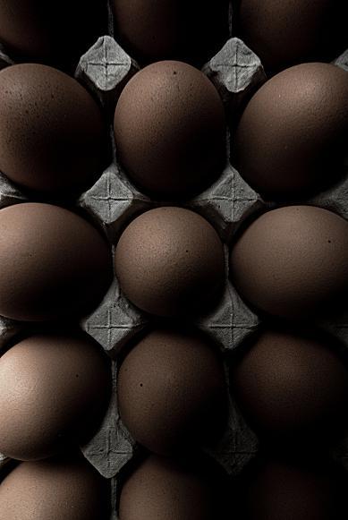 卵 #1_f0155808_6192522.jpg