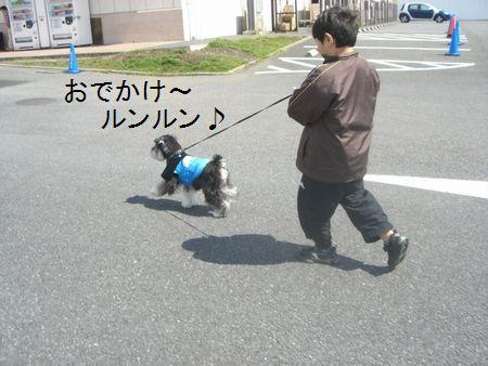 f0197317_1721664.jpg