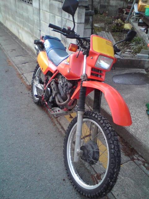 XLX4  + ヘルメット_a0095427_19254697.jpg