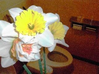 トイレで咲く花は?_b0054727_23145742.jpg