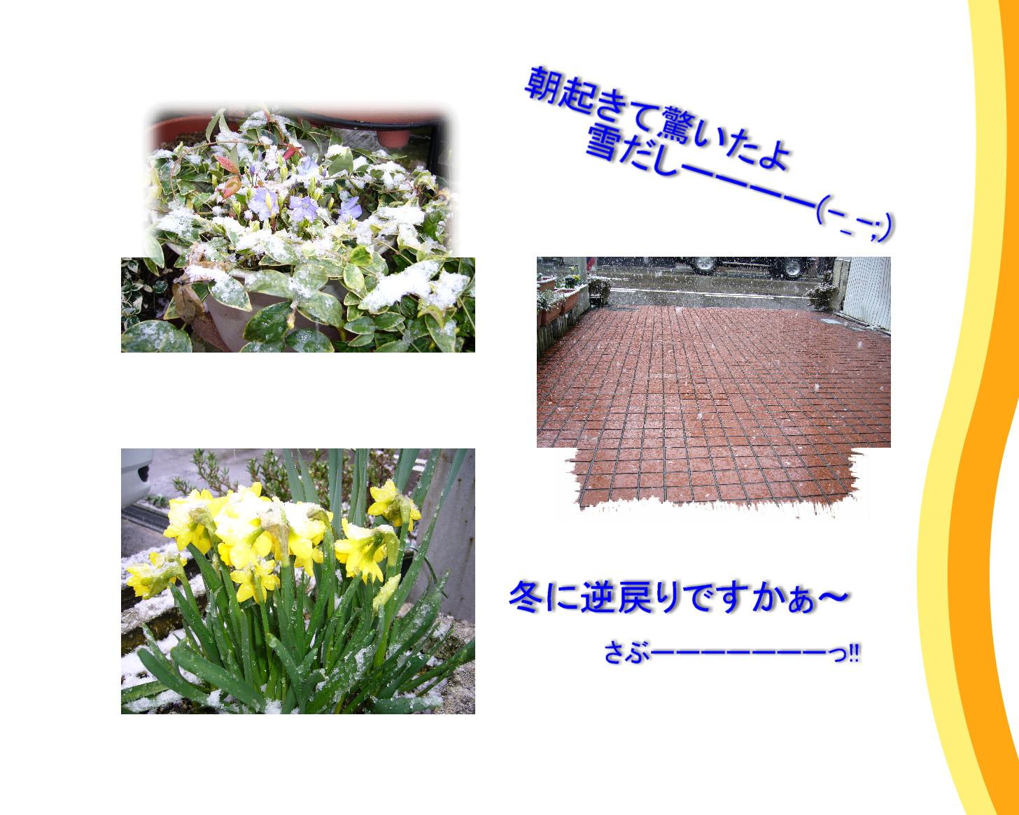 c0135361_23194562.jpg
