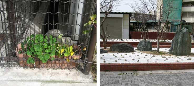 街の緑地化計画_b0057679_8302542.jpg