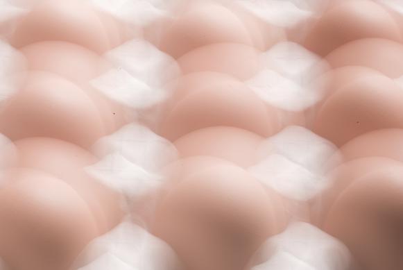 卵 #2_f0155808_5415572.jpg