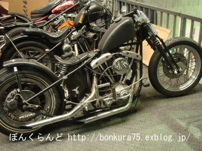 b0080809_1956082.jpg