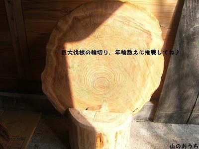 f0085327_22275629.jpg
