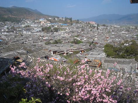 Day2:白沙村サイクリング、麗江から大理へ_d0026830_0394883.jpg