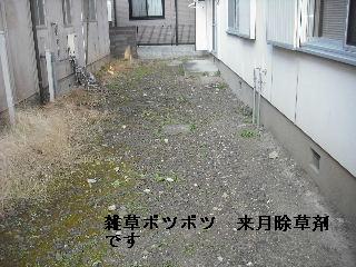 f0031037_1849690.jpg