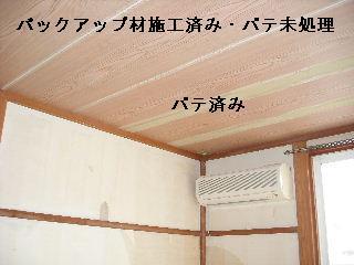 f0031037_190376.jpg