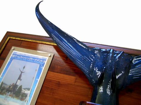 飛魚丸さんから 剥製が届きました!! 【カジキ マグロ トローリング】_f0009039_16555942.jpg