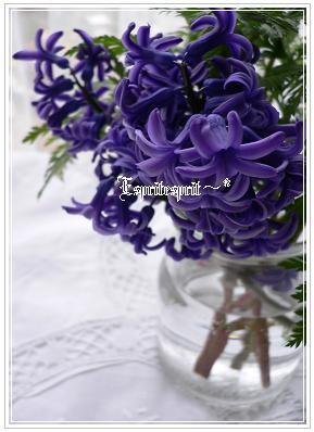 f0142141_20241337.jpg