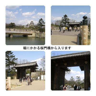 世界遺産国宝姫路城_a0084343_16151853.jpg