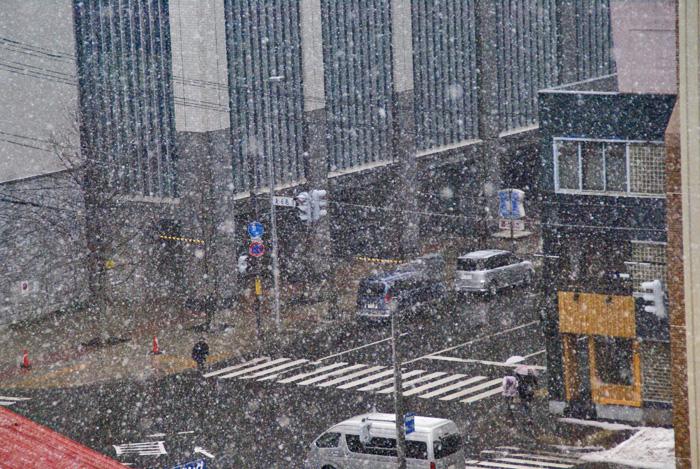 突然雪が降ってきました。拡大します。