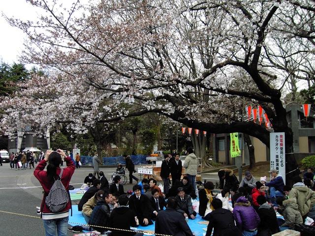 桜前線_f0135451_03660.jpg