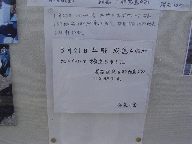 d0081669_71012.jpg