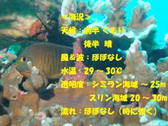 d0086871_14435949.jpg
